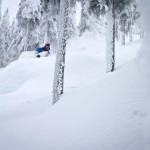 shreddin the pow through the trees